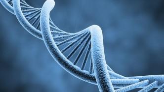 biologia syntetyczna zaprojkeetować organizm wearepl